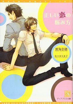 新書館ディアプラス文庫『正しい恋の悩み方』発売のおしらせ【BL】